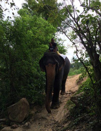 Sri-Lanka-s-detmi-pamiatky-62