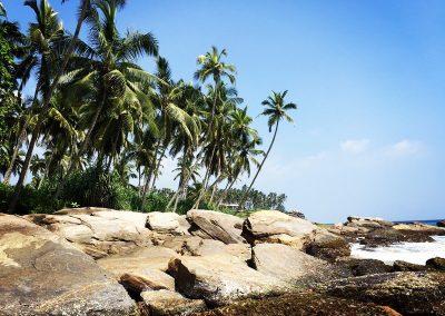 Sri-Lanka-s-detmi-plaze-13