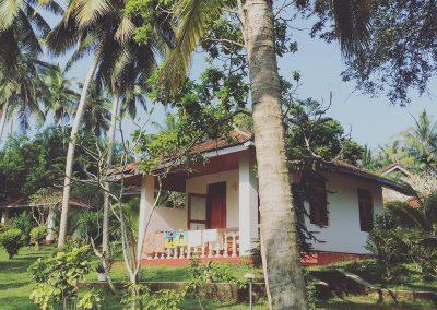 Sri-Lanka-s-detmi-plaze-15