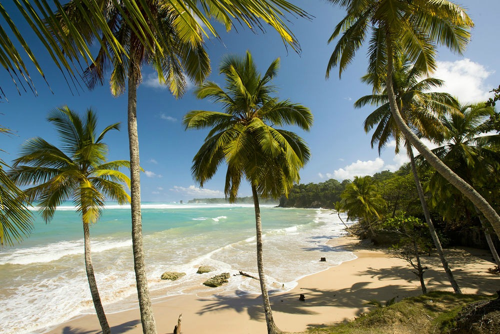 Život v Karibiku