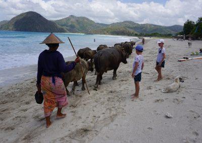 preco-vymenit-bali-za-lombok-04
