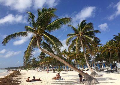 Mexiko-najkrajsie-plaze-11