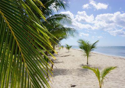 Mexiko-najkrajsie-plaze-14