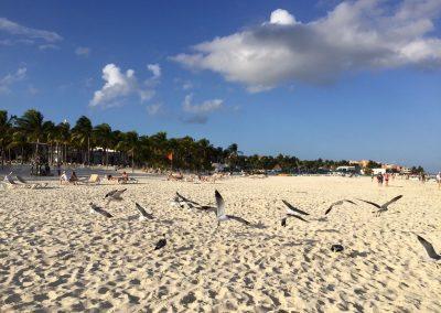 Mexiko-najkrajsie-plaze-36