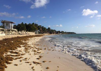 Mexiko-najkrajsie-plaze-37
