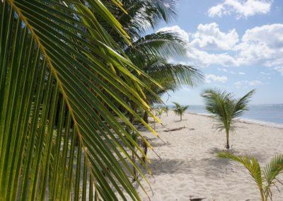 Mexiko-s-detmi-ostrov-Cozumel-14